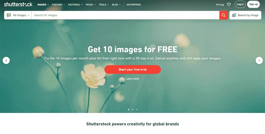 9 Shutterstock - Review Envato Elements (2021) - Thư viện hỗ trợ làm website Wordpress phổ biến