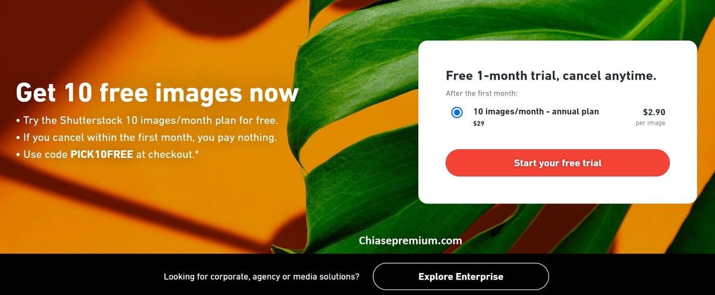 Giao diện tài khoản Shutterstock